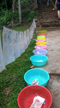 baskets for donations (organized by years/animals)